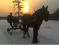 Sunset sleigh ride along the 2 miles of private groomed trails.