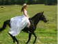"Katie riding Jag, in an event we like to call ""Trash the Wedding Dress"". Congratulations again!"